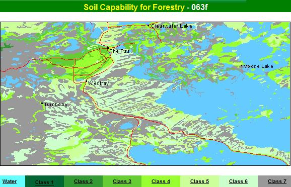 Forest capability of soils  around The Pas, Manitoba