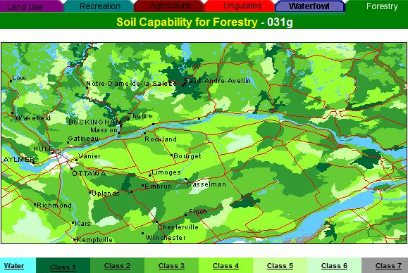 forest capability map